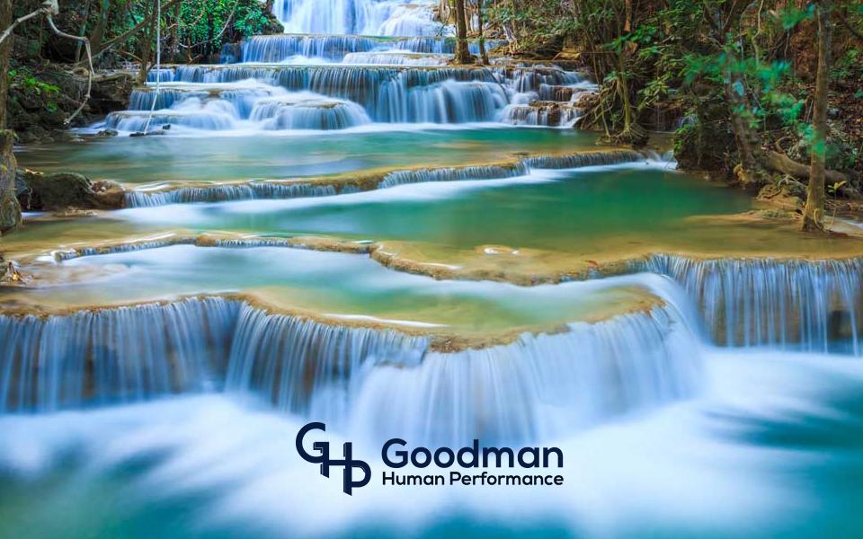 Goodman Human Performance