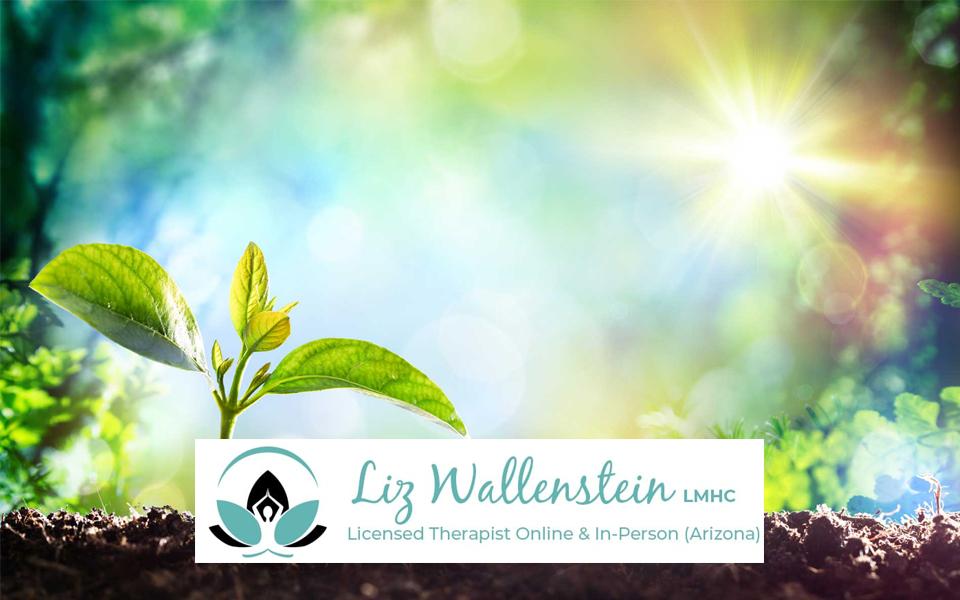 Liz-Wallenstein